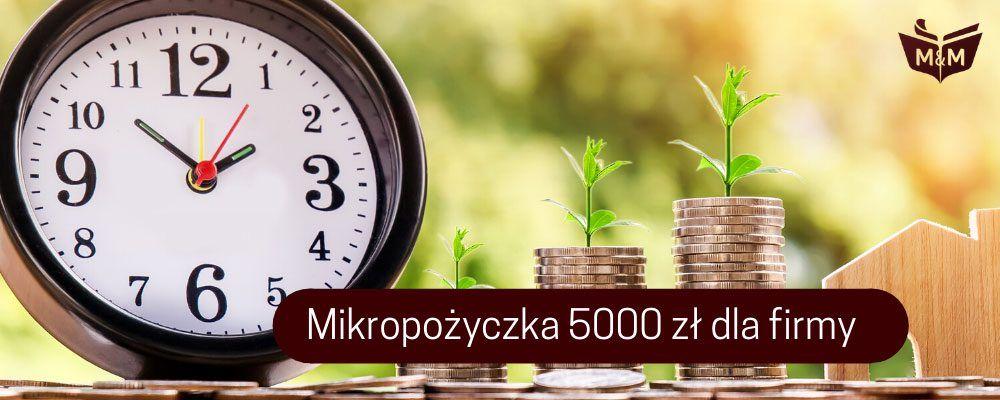 Mikropożyczka 5000 zł dla przedsiębiorców
