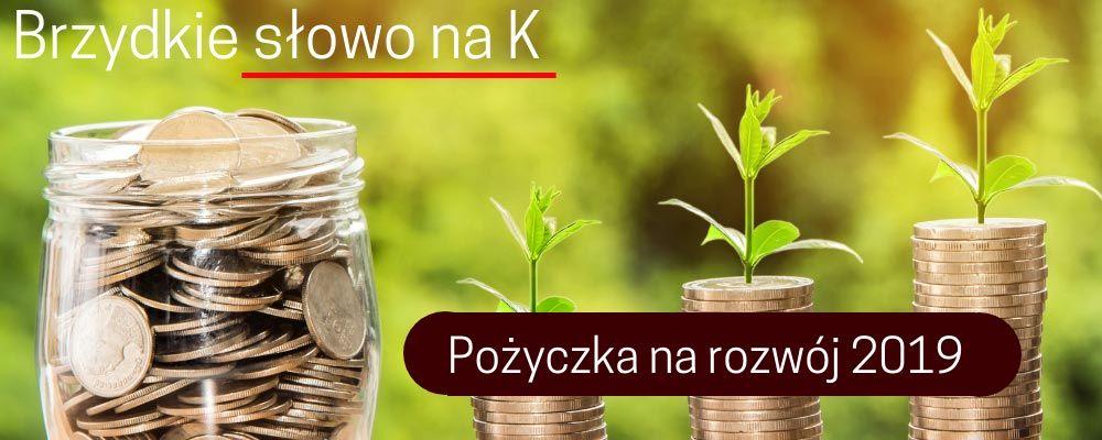 Pożyczka na rozwój dla przedsiębiorców